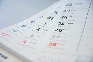 Kalendarz pronar