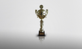 Puchar Ministra Rolnictwa i Rozwoju Wsi - AGROTECH 2006